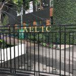 Wimb19 - AELTC Club scenes
