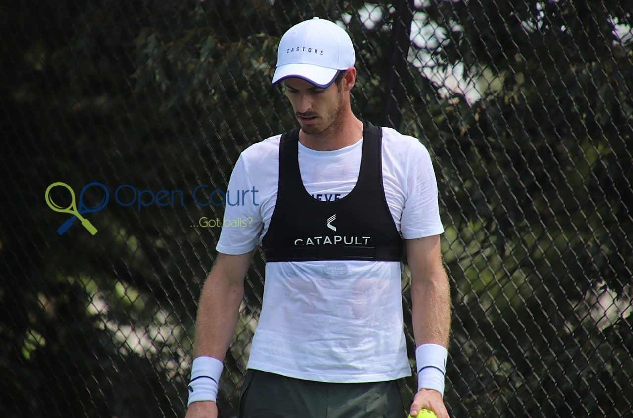 A year ago at the Citi Open in D.C., Murray was taking his first steps back on court after hip surgery. (Stephanie Myles/Opencourt.ca)